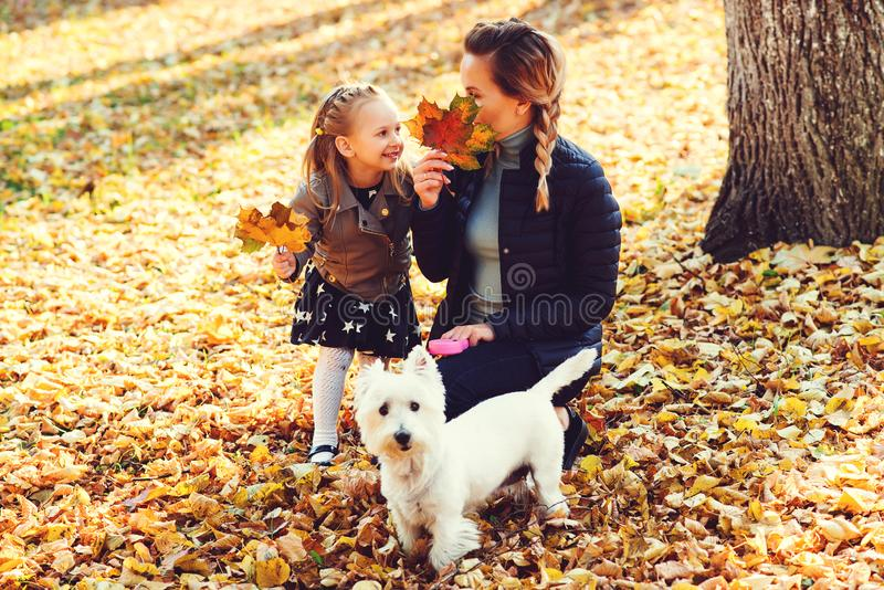 Mother, daughter and their dog having fun in the autumn park among the falling leaves. Walk in the autumn park. Girl and her mothe royalty free stock photography