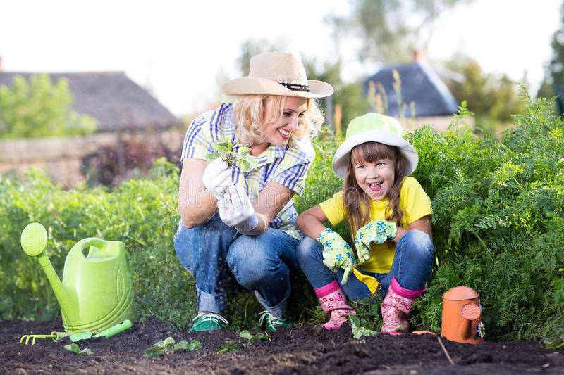 Mother and daughter working in the garden stock photos