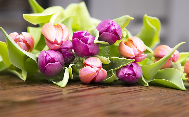 Mother day flover bouqet stock photo