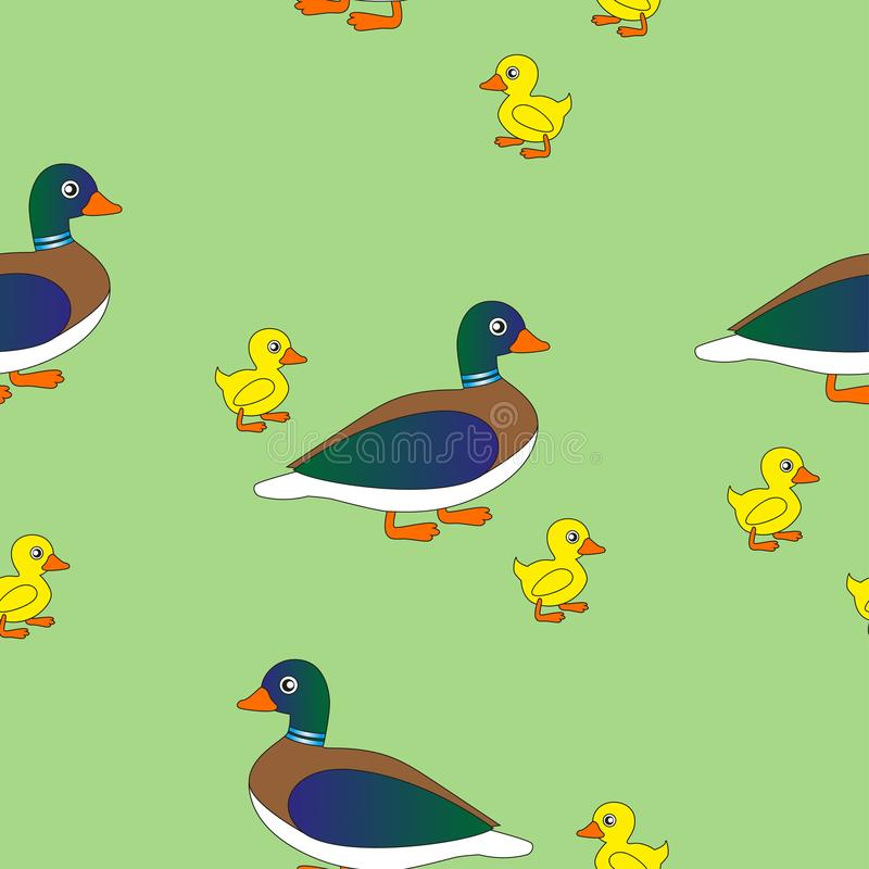 Mother duck with her ducklings. vector illustration