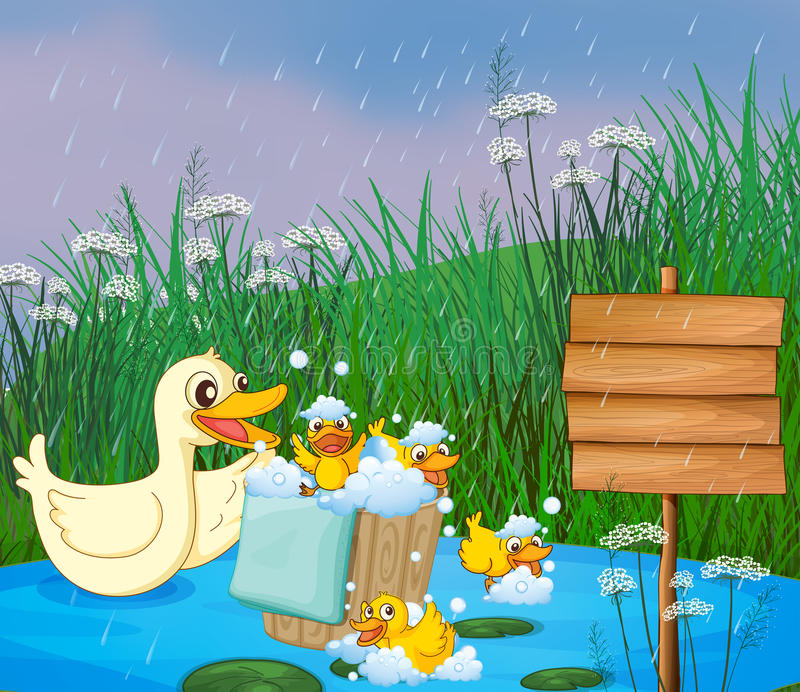 A mother duck with her ducklings playing under the rain vector illustration
