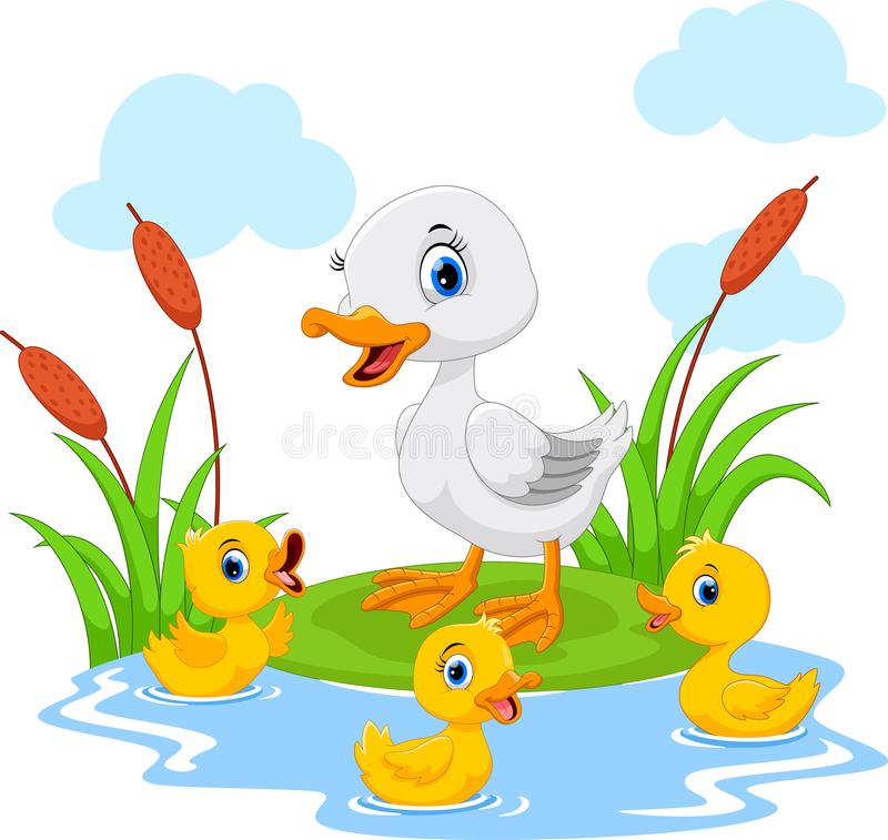 Mother duck swims with her three little cute ducklings in the pond. Funny and adorable vector illustration
