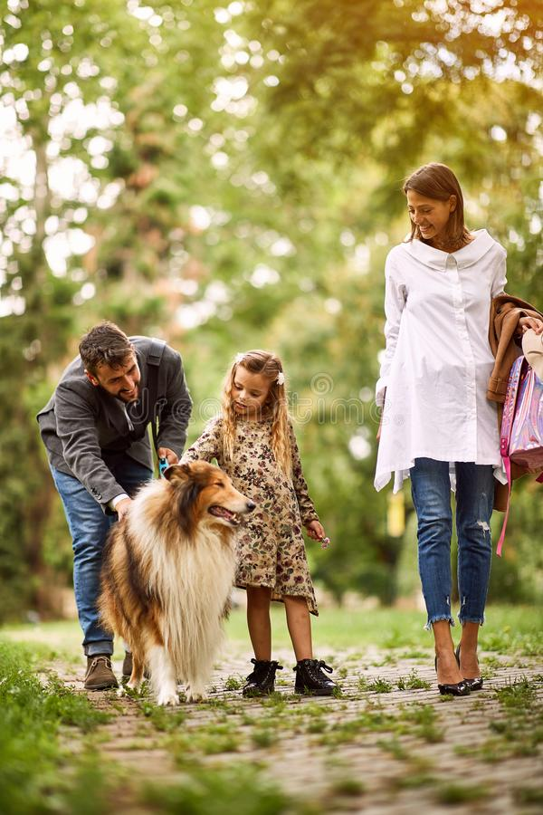 Mother and father with their daughter is having fun with dog in park stock photo
