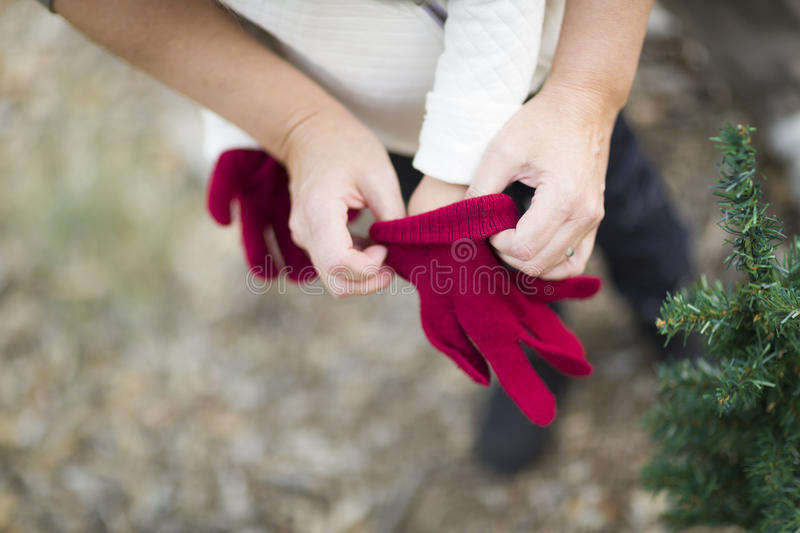 Mother Helping Put Red Mittens On A Child stock photos