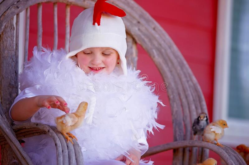 Mother hen girl. A young girl in a mother hen costume with chicks around her stock images