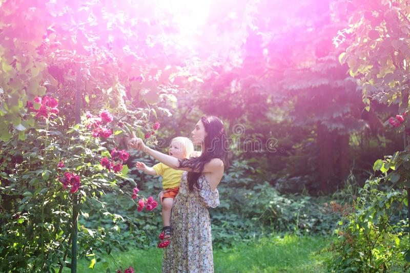 Mother hold son at blossoming roses on idyllic sunny day stock images