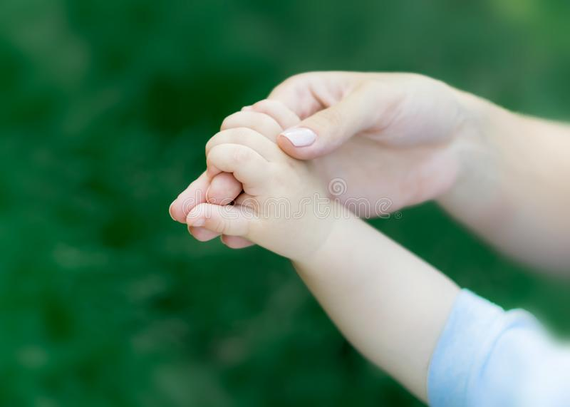 Mother holding hand of newborn baby on green grass background. The concept of maternal tenderness, care and health. Mother holding hand of newborn baby on green stock image