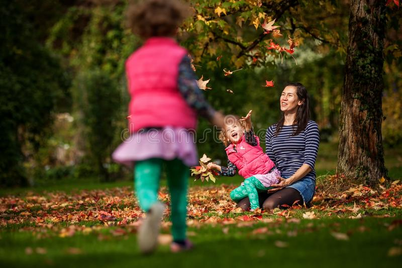 Mother and identical twins having fun with autumn leaves in the park, blond cute curly girls, happy kids, girls in pink jacket stock photos