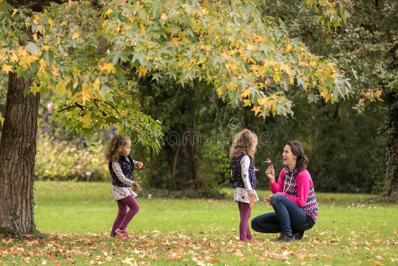 Mother and identical twins having fun under tree with autumn leaves in the park, blond cute curly girls, happy family, beautiful royalty free stock photo