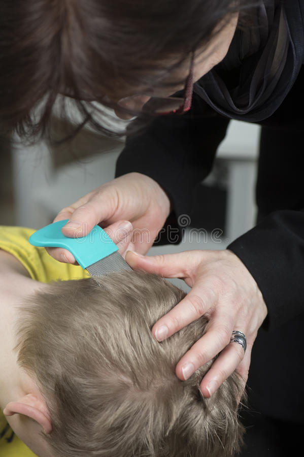 Mother inspect childs head for lice. Mother checking childs head for lice with a comb stock photo