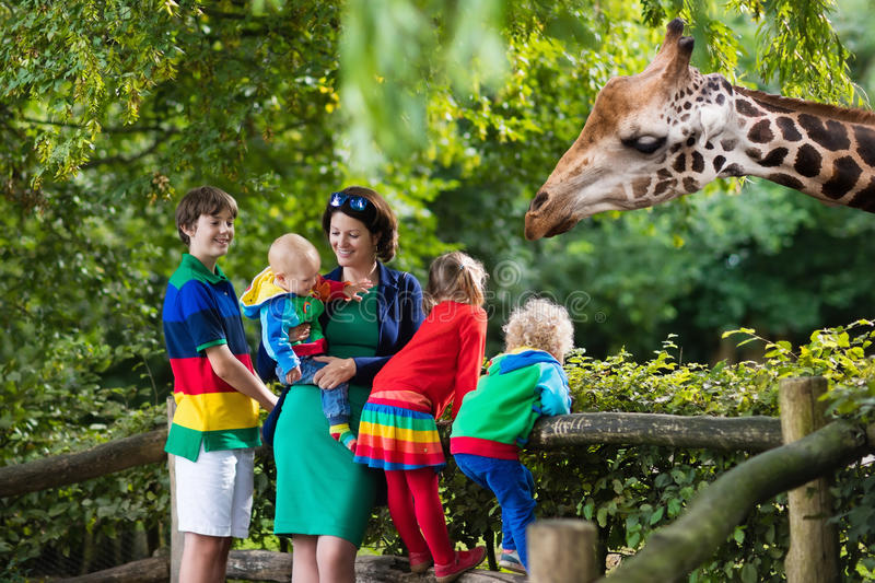Mother and kids feeding giraffe at the zoo royalty free stock photos