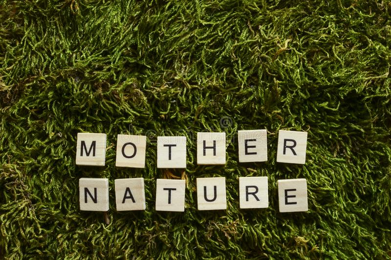 Mother nature written with wooden letters cubed shape on the green grass. stock image