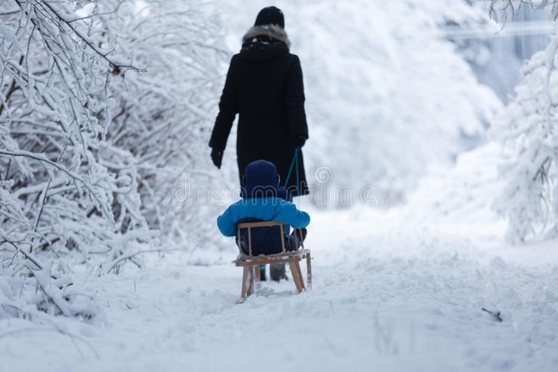 Mother pulling sled with her little son. Family playing outside in winter royalty free stock images