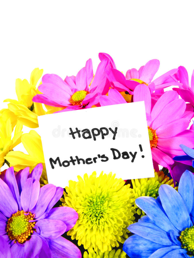 Download Mother's Day flowers stock photo. Image of bold, gift - 24362030