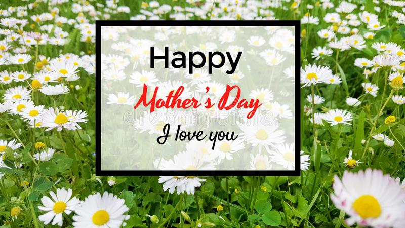 Mother`s Day Greeting Card with Flowers Background royalty free stock photo
