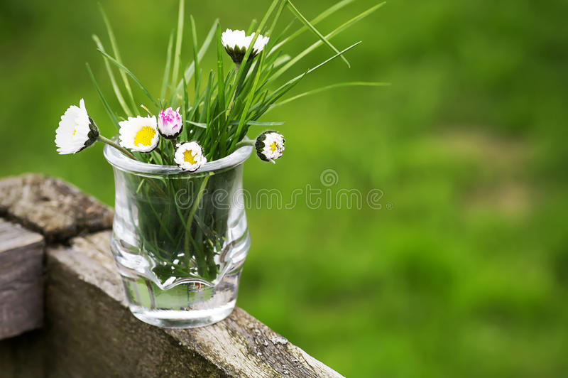 Mother's day 001-130429 stock images