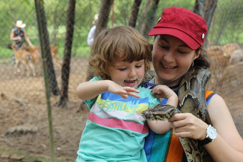 Little girl amazed about snake royalty free stock image