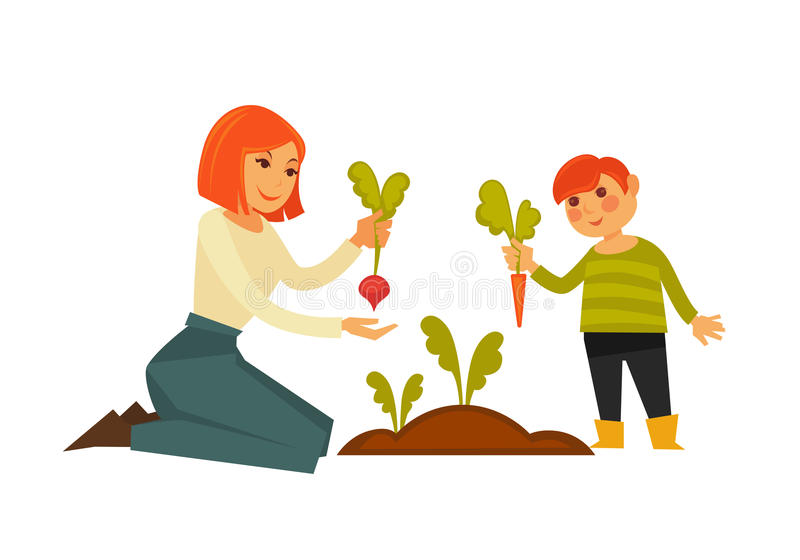 Mother and small son pulling carrot and beet from ground vector illustration