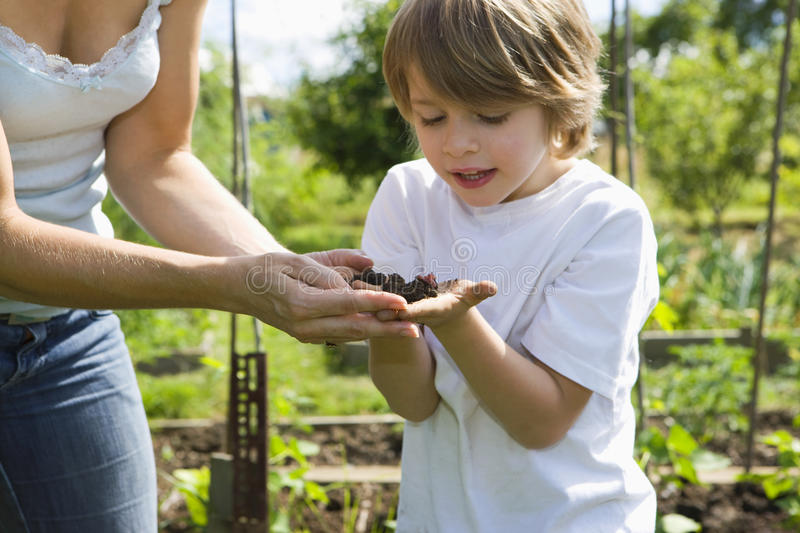 Mother With Son Exploring Soil In Garden. Mother with son exploring soil in community garden stock image