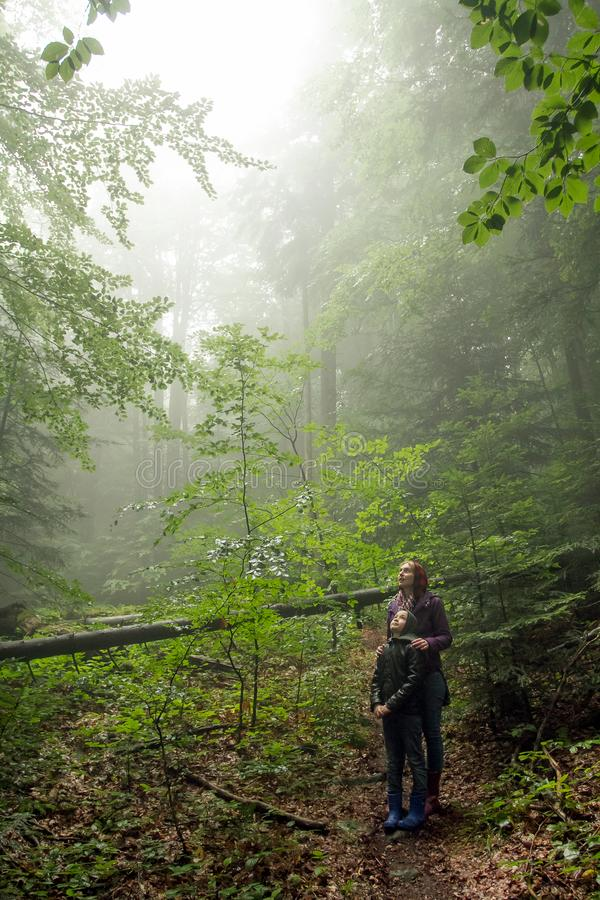 Mother and son in the mystic green foggy forest. The are looking royalty free stock photo