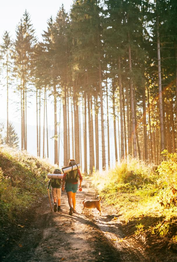 Mother and son with their family member beagle dog walking by the trekking path with backpacks under the evening sun light stock photo