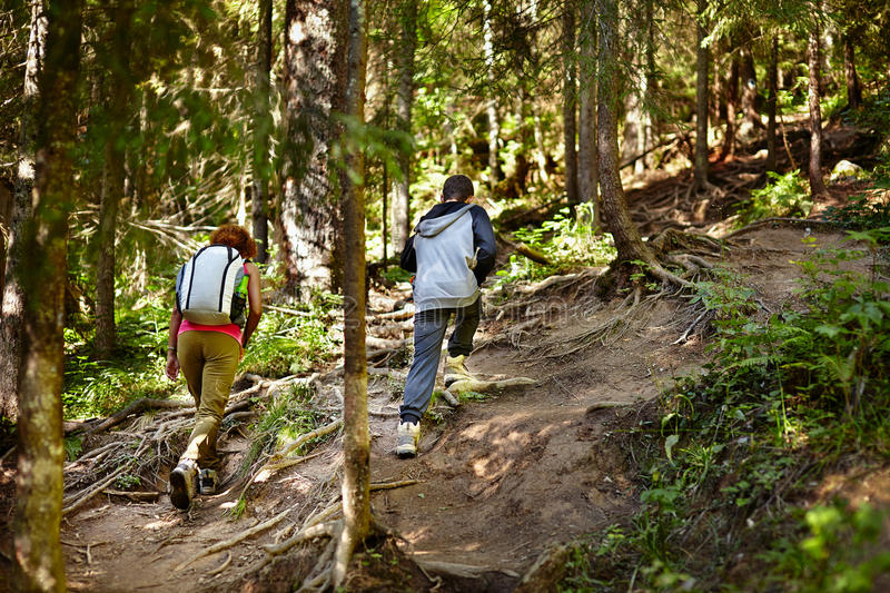 Download Mother And Son Walking On A Hike Trail Royalty Free Stock Photography - Image: 38601597