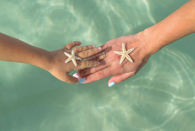 Mother and son watching starfish. Positive human emotions, feelings, joy. Funny cute child making vacations and enjoying summer. royalty free stock images