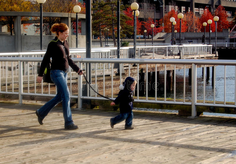 Mother and harnessed Toddler Walk royalty free stock photography