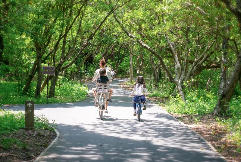 Mother and Two Children Rides Bicycle on Bike Path in a Park royalty free stock photo