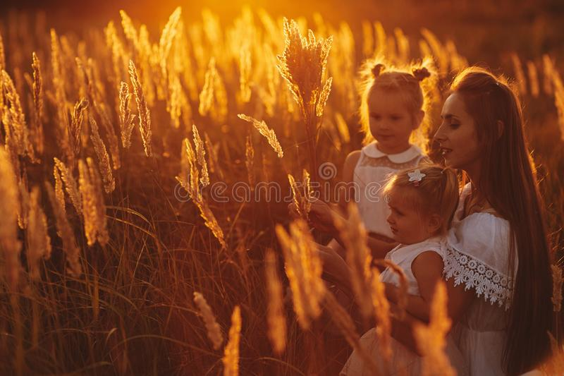 Mother and two daughters holding hands circling. Family time together at sunset. Cheerful picnic. Soft focus royalty free stock photo