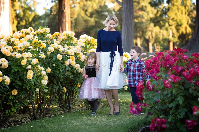 A mother with two little kids walking in a rose garden talking to them royalty free stock photos