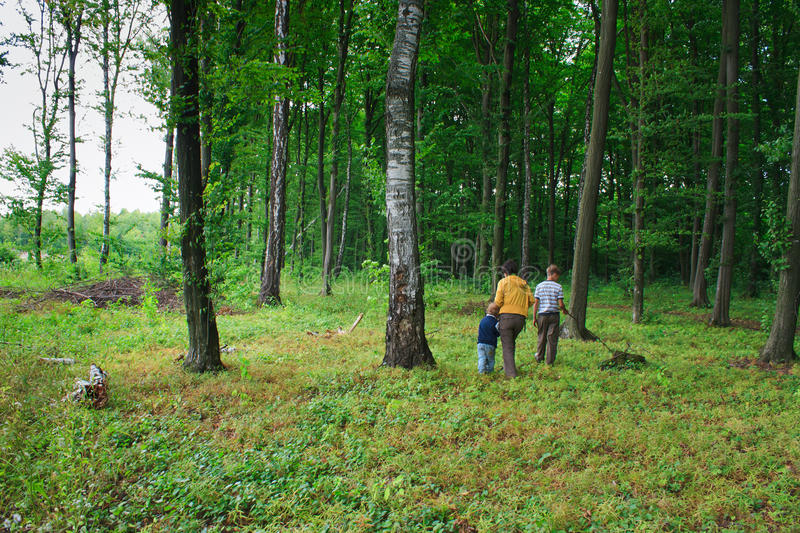 Download Mother And Two Sons In The Green Woods Stock Image - Image: 20920451