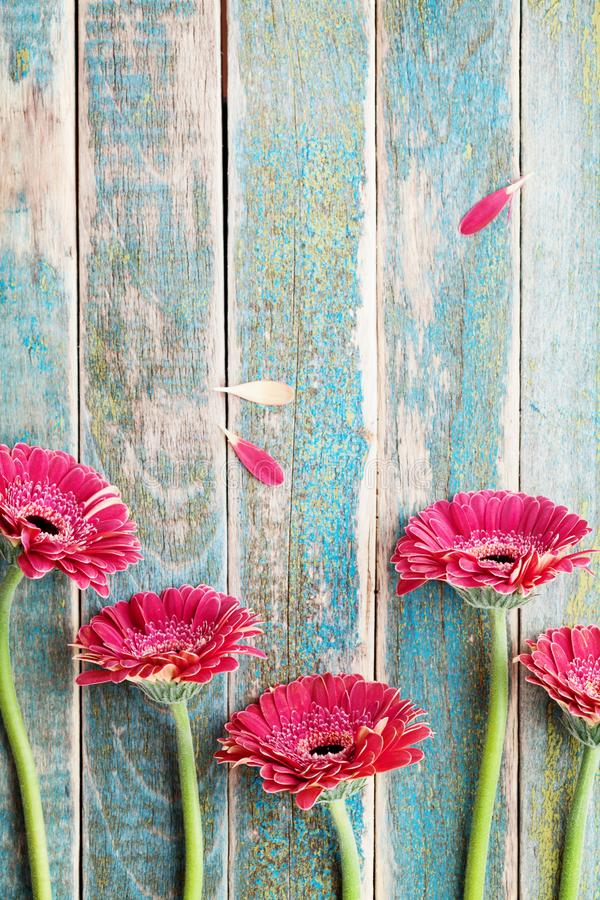 Mother or womans day greeting card from beautiful gerbera daisy flowers border on vintage turquoise background. Mother or womans day greeting card from stock photo