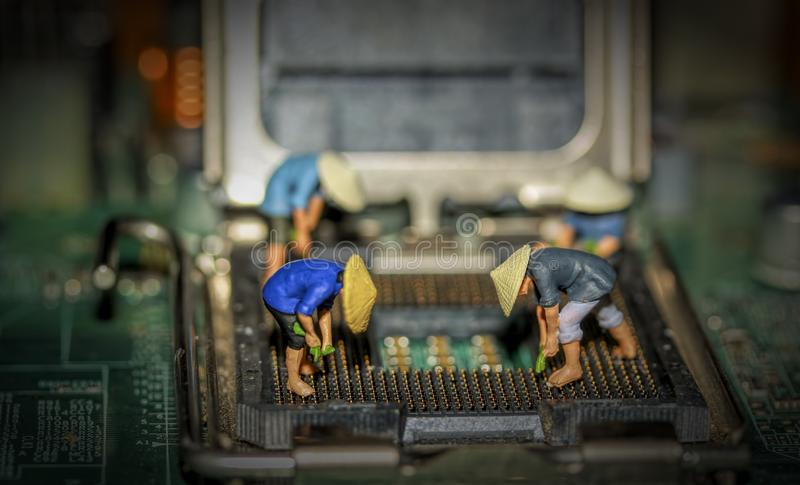 The Motherboard Farmers stock photo