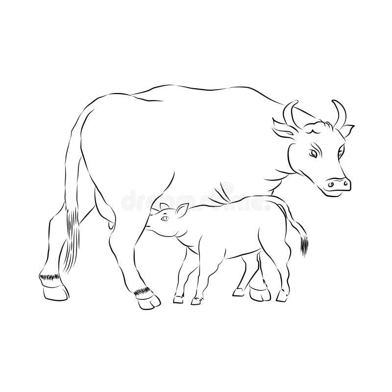motherhood Fostra och barnet Illustration för kontur för ko- och kalvöversiktsvektor stock illustrationer