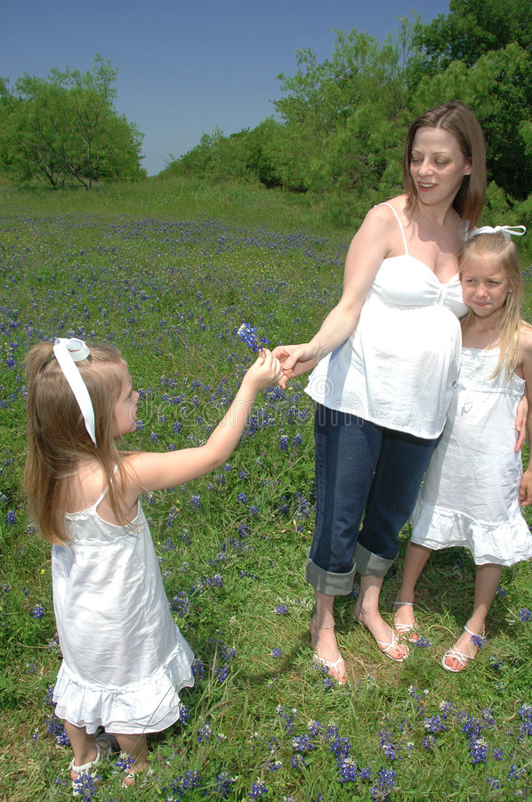 Mothers Day. A pregnant mom stands with her children in a field of blue bonnet flowers. A daughter hands her mother a flower stock images