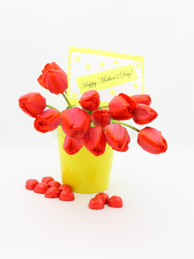 Mothers Day Card Tulip - Stock Photo