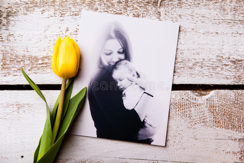 Mothers day composition. Black-and-white picture and yellow tuli stock photography