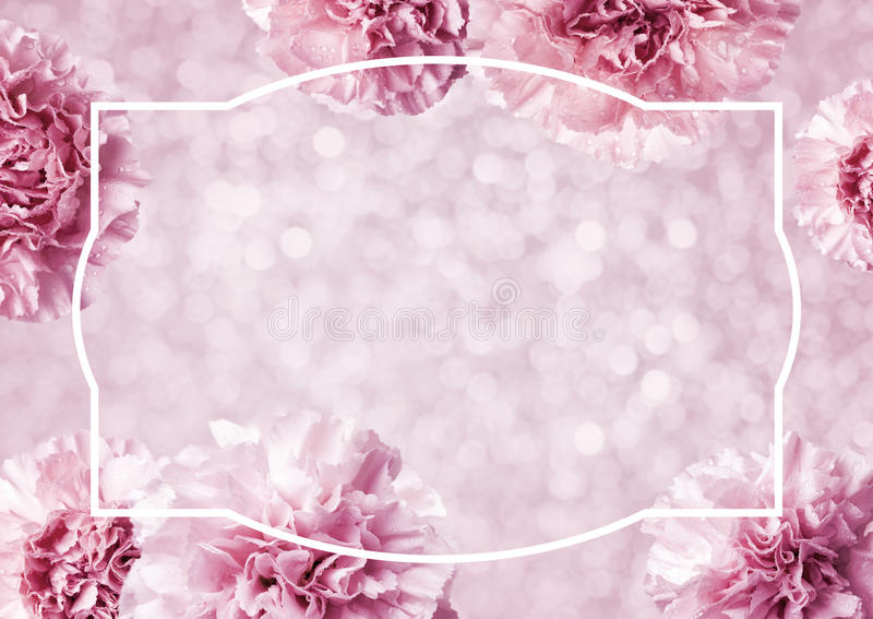 Mothers day concept of pink carnation flowers background. With copy space stock photography