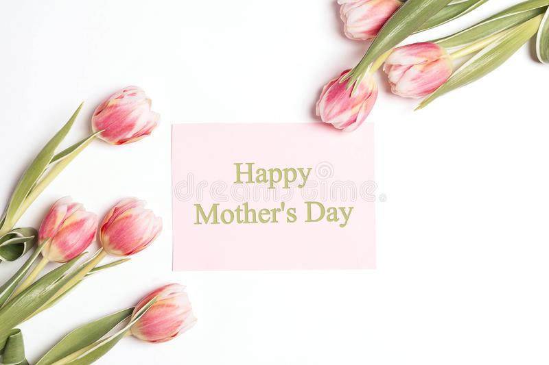 Mothers day message with tulips flowers on white background royalty free stock images