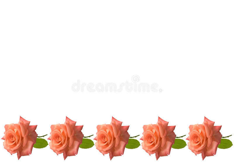 Mothers day roses card background stock image