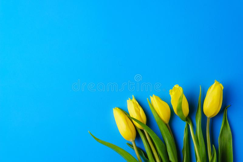 Mothers day, valentine, spring flower background stock images