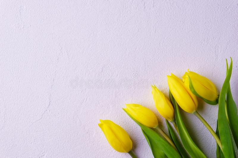 Mothers day, valentine, spring flower background royalty free stock image