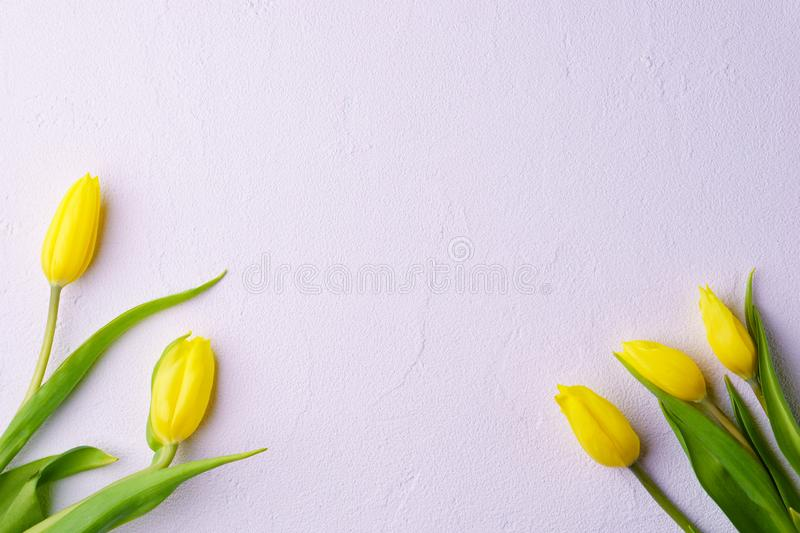 Mothers day, valentine, spring flower background royalty free stock photography