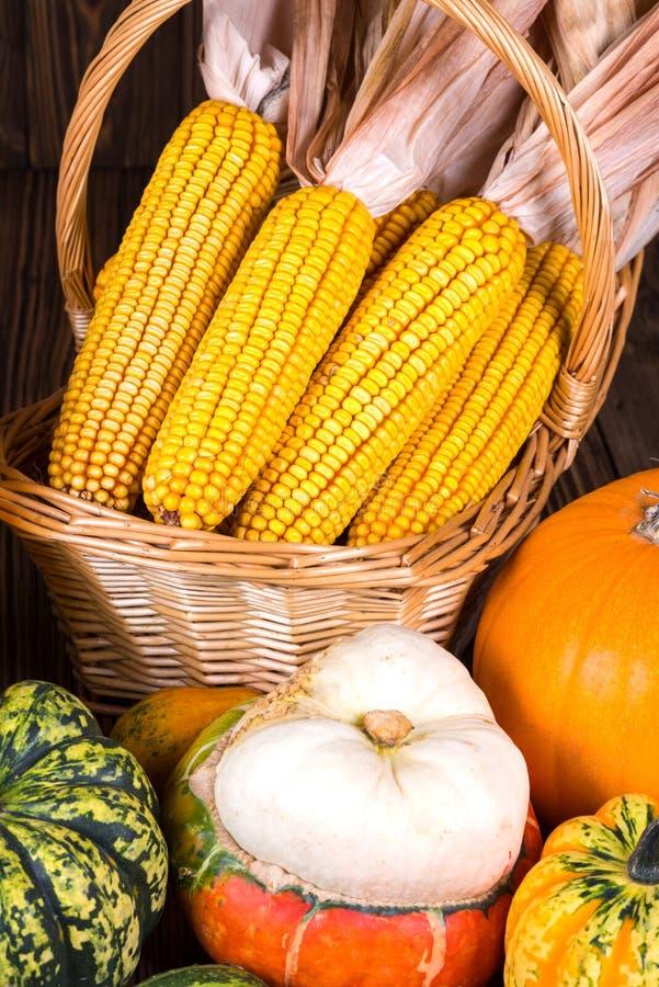 Motif automnal de thanksgiving avec un panier plein avec des épis de maïs et de différents potirons colorés photo stock