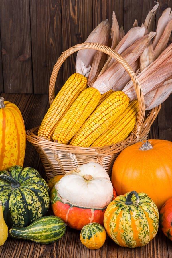 Motif automnal de thanksgiving avec un panier plein avec des épis de maïs et de différents potirons colorés photos stock