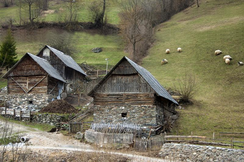 A motif from Bosnian mountain village. Wooden houses and stables with wooden roofs and stone fundamentals with sheep in background royalty free stock image