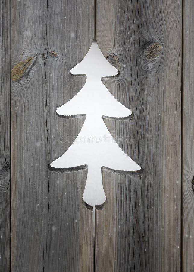 Motif d'arbre de Noël dans les panneaux en bois de volet photo stock