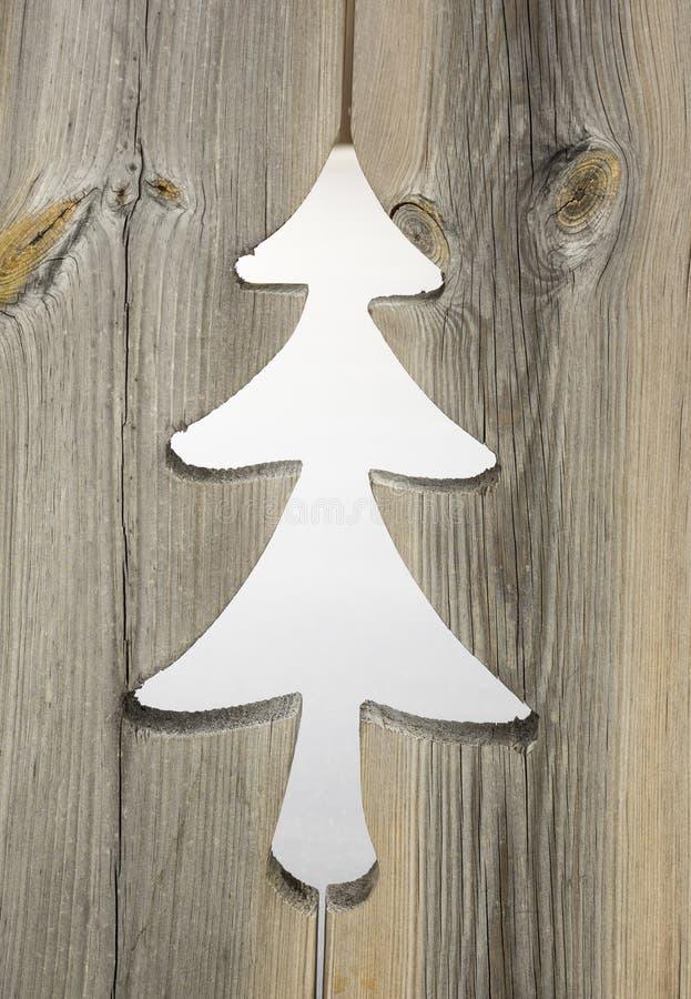 Motif d'arbre de Noël dans les panneaux en bois de volet photographie stock libre de droits