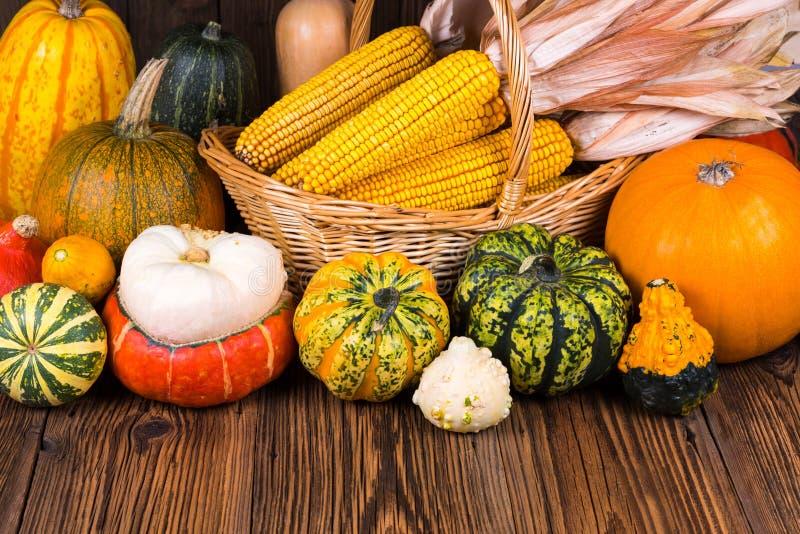 Motif d'Autumn Thanksgiving avec un panier plein avec des épis de maïs et de différents potirons colorés sur un vieux fond en boi photographie stock